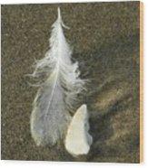 Oregon Feather Wood Print