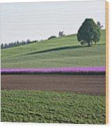 Oregon Flower Farm Wood Print