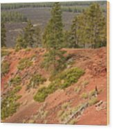 Oregon Landscape - Red Crater Wood Print