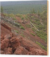Oregon Landscape - Red Rocks At Lava Butte Wood Print