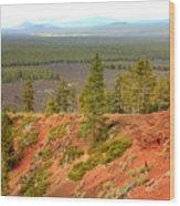 Oregon Landscape - View From Lava Butte Wood Print