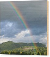 Oregon Rainbow Wood Print