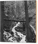 Oregon River Black And White Wood Print