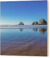 Oregons Rocky Coast Wood Print