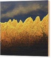 Organ Mountains Land Of Enchantment 1 Wood Print