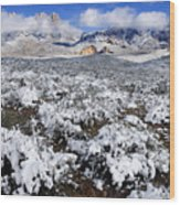 Organ Mountains With Snow Wood Print