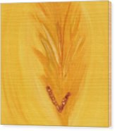 Ori An Ah Wood Print