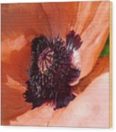 Oriental Poppy - Duvet Covers Wood Print