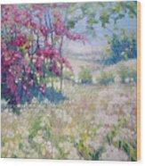 Original Oil Painting - Spring Meadow In Sussex Wood Print