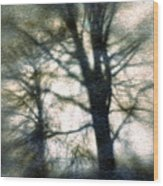 Original Tree Wood Print