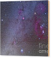 Orion And Canis Major Showing Dog Stars Wood Print