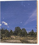 Orion And Sirius Rising Wood Print
