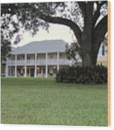 Ormond Plantation Wood Print