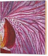 Orquidea Rosa Wood Print