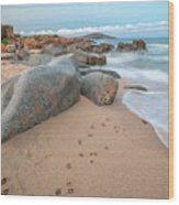 Orri Beach Wood Print