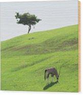 Oryx On Hill Wood Print