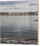 Oslo Waterfront Wood Print