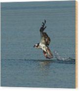 Osprey 1 - Fish 0 Wood Print