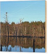 Osprey Domain Wood Print