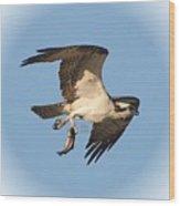 Osprey Natures Way Ll Wood Print