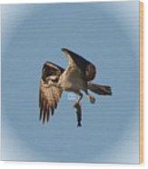 Osprey Natures Way Lll Wood Print