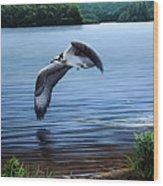 Osprey Over Clear Lake Wood Print