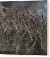 Osprey Protecting The Nest Wood Print