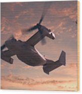Ospreys In Flight Wood Print