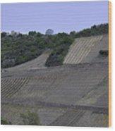 Osterspai Vineyards Wood Print