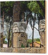 Ostia Antica - Theatre Marble Masks Wood Print