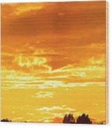 Oswego Sunset 5 Wood Print