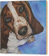 Otis The Basset Hound Wood Print