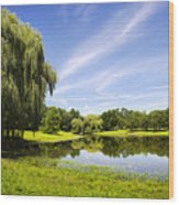 Otsiningo Park Reflection Landscape Wood Print