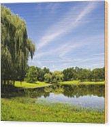 Otsiningo Park Reflection Landscape Wood Print by Christina Rollo