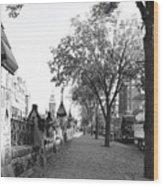 Ottawa Sidewalk Wood Print