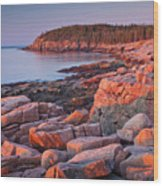 Otter Cliffs  Wood Print