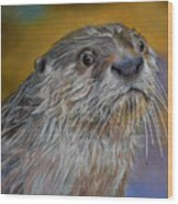 Otter Or Not Wood Print