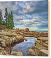 Otter Point Reflections Wood Print