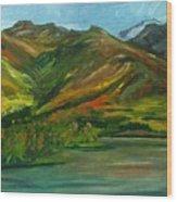 Otto Lake Wood Print by Amy Reisland-Speer