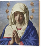 Our Lady Of Health Wood Print
