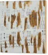 Ourabetic Alphabet Wood Print