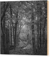 Out From The Darkness Wood Print