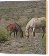 Out In The Open Range Wood Print