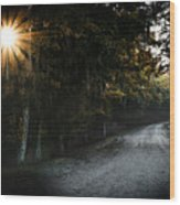 Out Of Darkness Wood Print