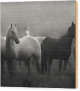 Out Of The Mist Wood Print by Ron  McGinnis