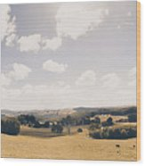 Outback Ridgley In Scenic Tasmania, Australia Wood Print
