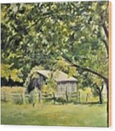 Outbuilding At Oriskatach New York Wood Print