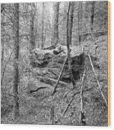 Outcrop, Woods, Dipton Burn Wood Print