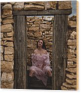 Outdoor Outhouse Wood Print