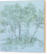 Outer Banks Wood Print